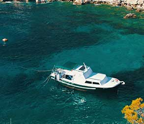 Intracoastal Cruise